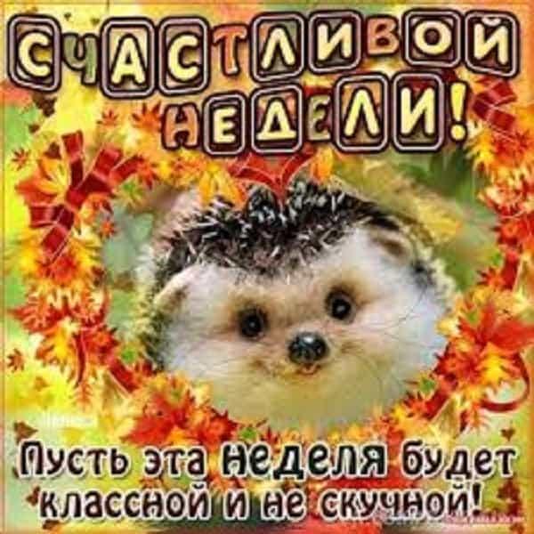 открытка с пожеланиями