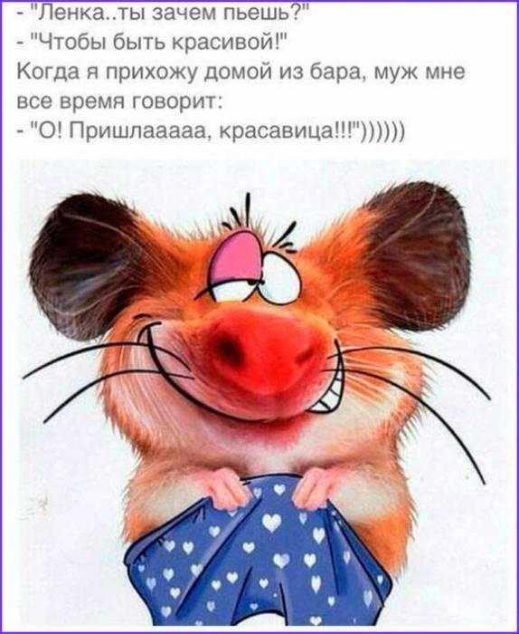 прикольная крыса