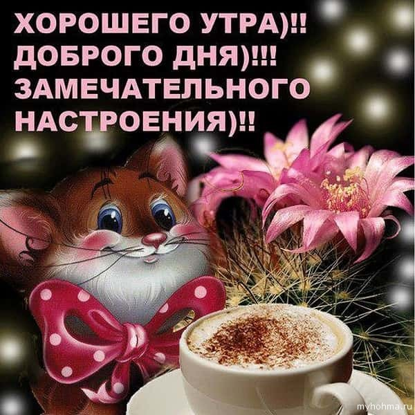 доброе утро-8