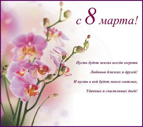 орхидеи на 8 марта
