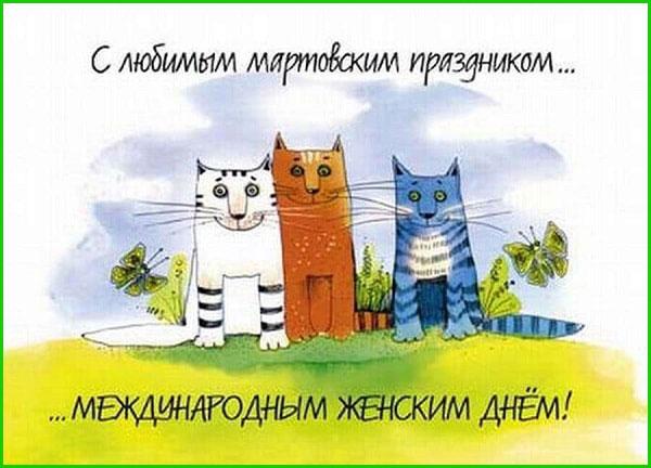 смешные-коты с поздравлениями