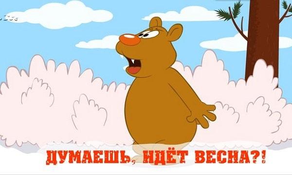 смешная картинка про медведя