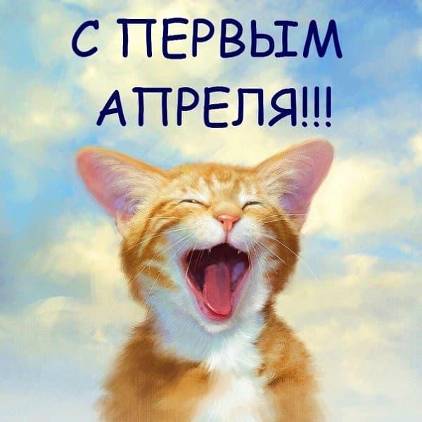 прикольный кот на 1 апреля