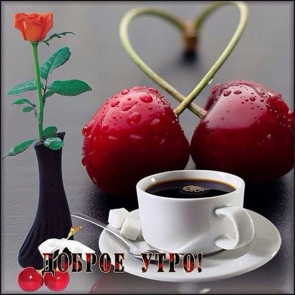 Доброе утро любимый целую тебя