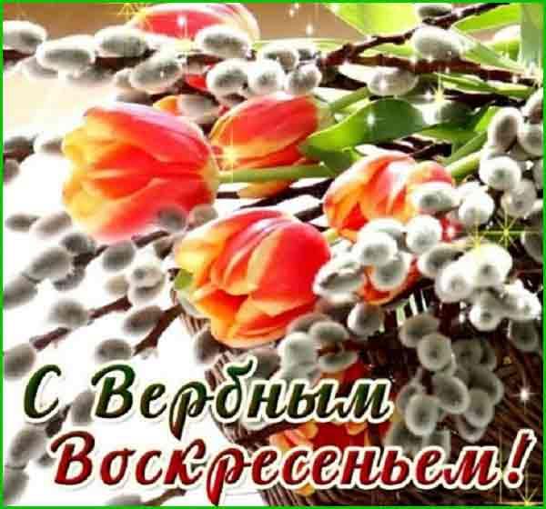 верба и тюльпаны на вербное воскресенье