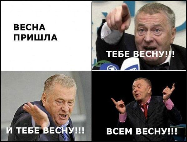 прикольная картинка с Жириновским