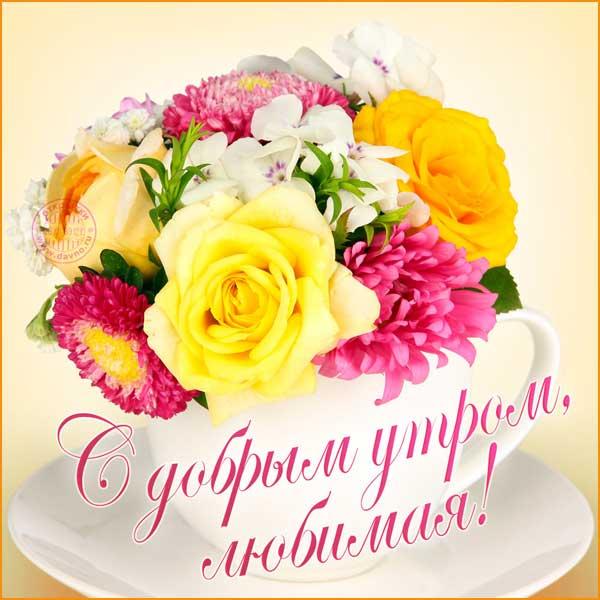 доброе утро любимая-2