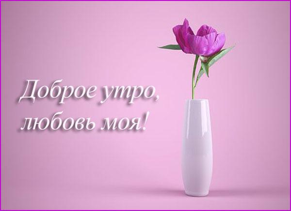 романтичная картинка-3
