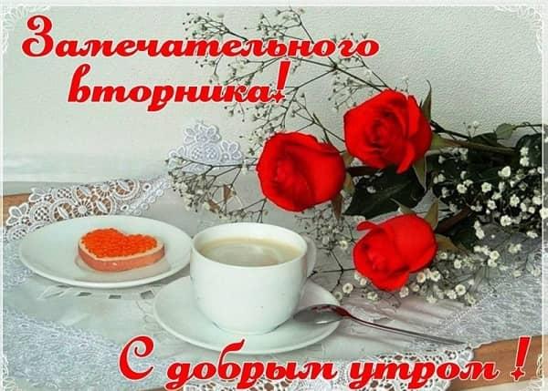 доброго утра вторника картинка прикольная-3