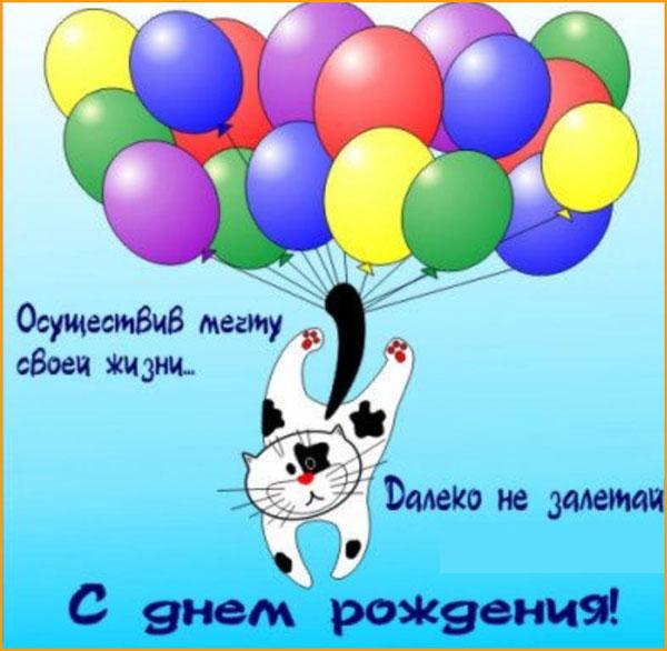 смешная открытка с котом-7