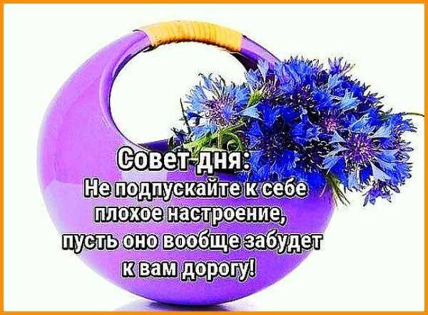 пожелание доброго утра вторника-1