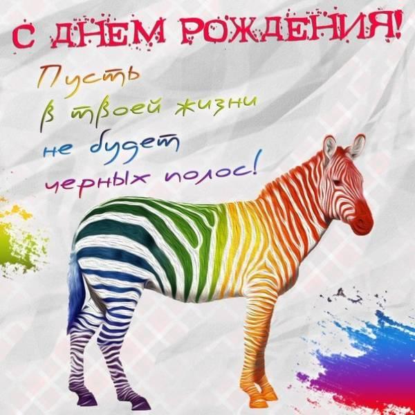 смешная картинка с зеброй