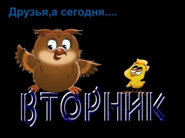 доброго утра вторника картинка прикольная-2