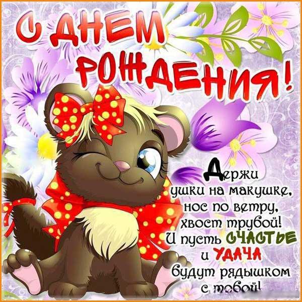 смешная открытка с котом-2