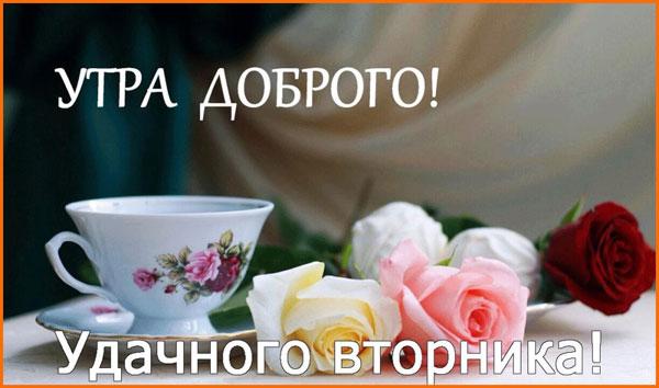 пожелание доброго утра вторника-3