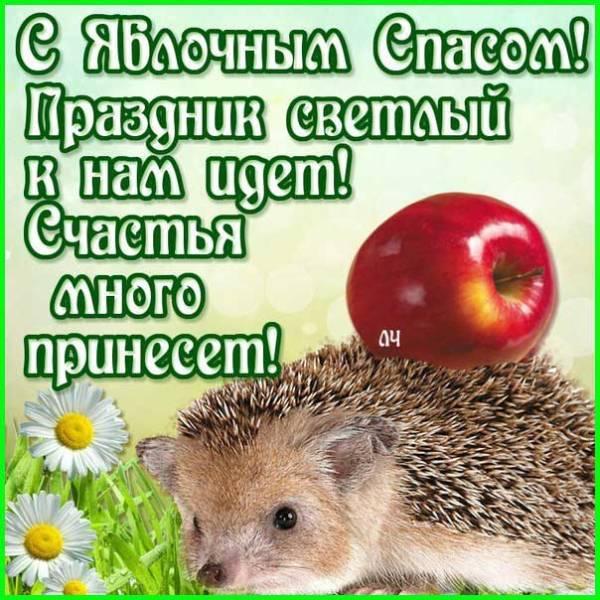 Яблочный Спас картинка с поздравлением-7