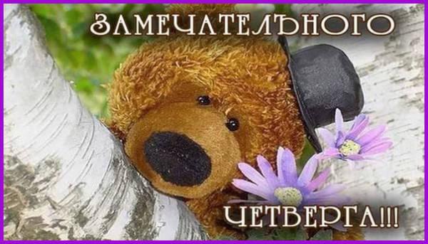 доброе утро четверга картинка прикольная-5