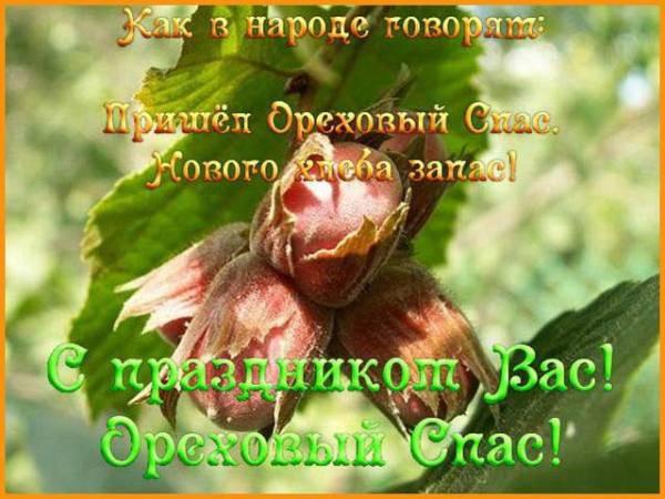 Ореховый (Хлебный) Спас картинка-10