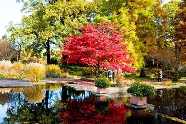 красивый осенний пейзаж-5