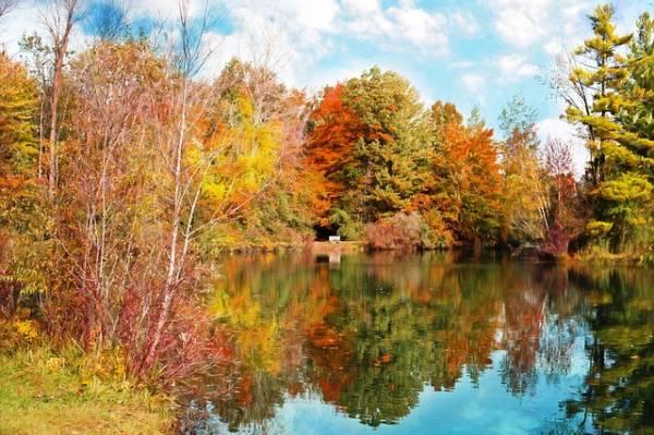 красивый осенний пейзаж-1