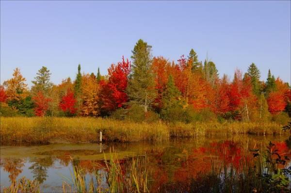 красивый осенний пейзаж-10