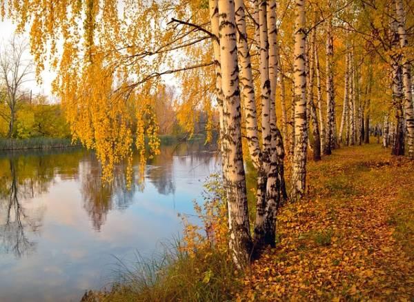 красивый осенний пейзаж-3