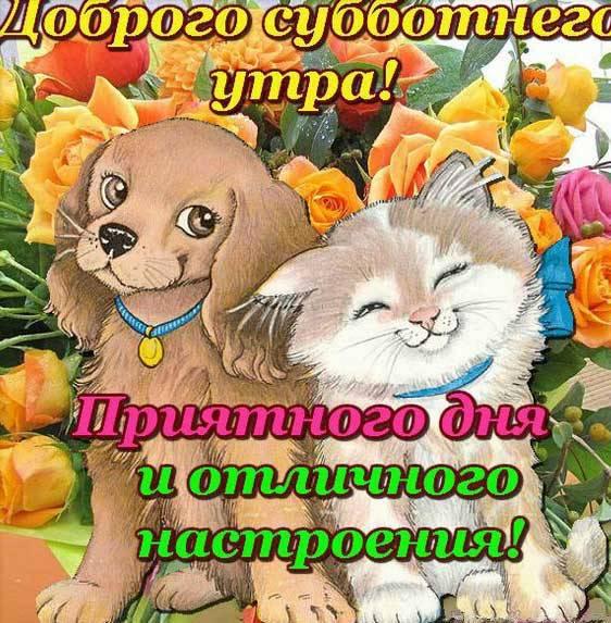 суббота картинка прикольная-6