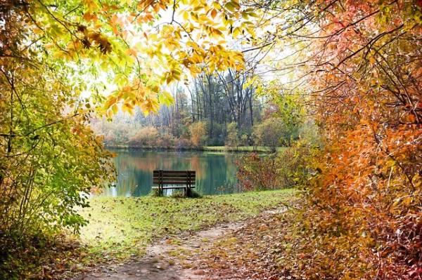красивый осенний пейзаж-2