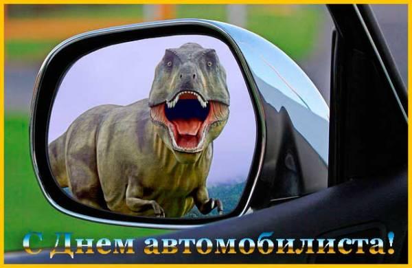 прикольный вид в зеркале авто