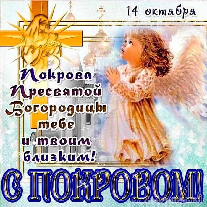 открытка на Покров прикольная-1