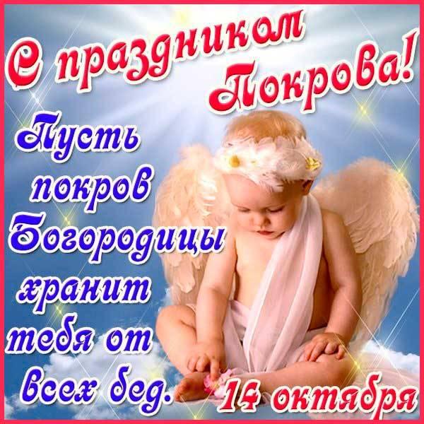 открытка на Покров прикольная-2
