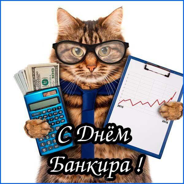 кот в день банкира