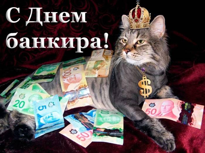 прикольная открытка с котом в день банкира