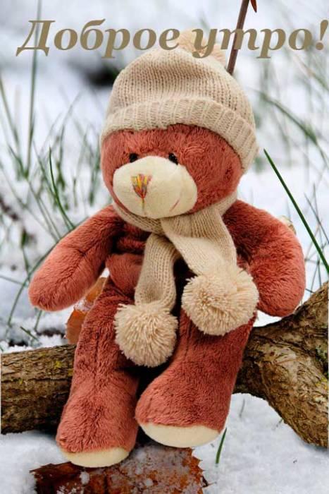 Доброе утро - картинки зимние красивые