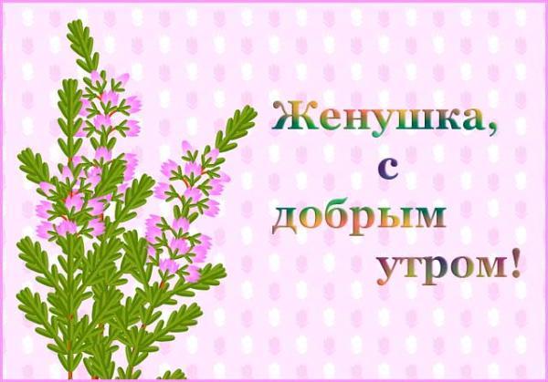нежная картинка с цветами и пожеланием доброго утра