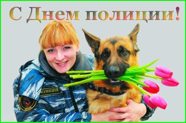 овчарка с тюльпанами и девушка