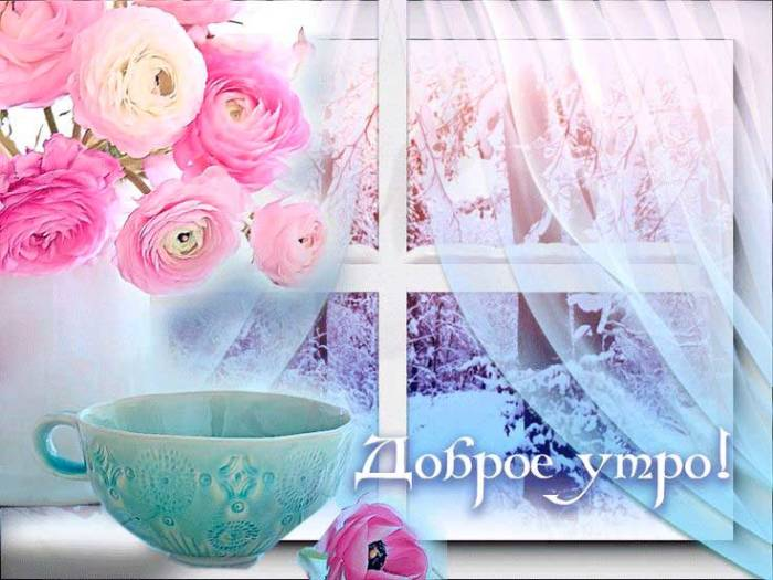 розы, чашка и пожелание доброго утра