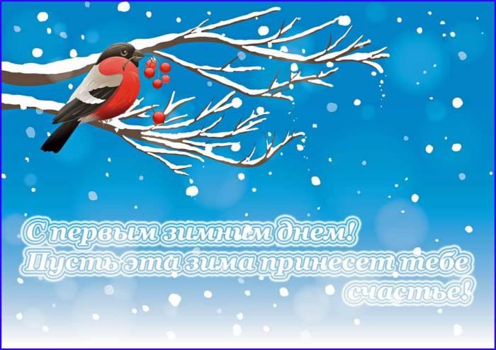 снегирь и поздравление с первым днем зимы