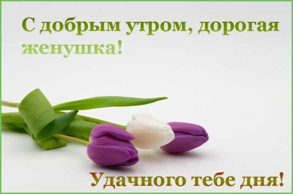 тюльпаны и пожелание