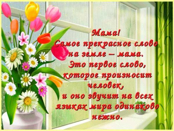 тюльпаны и стихи для мамы