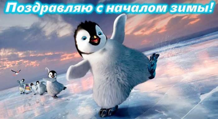 забавный пингвиненок