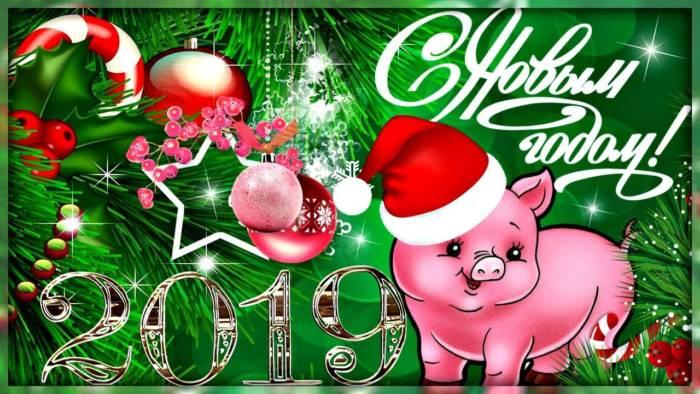 поздравление с годом Свиньи в прозе